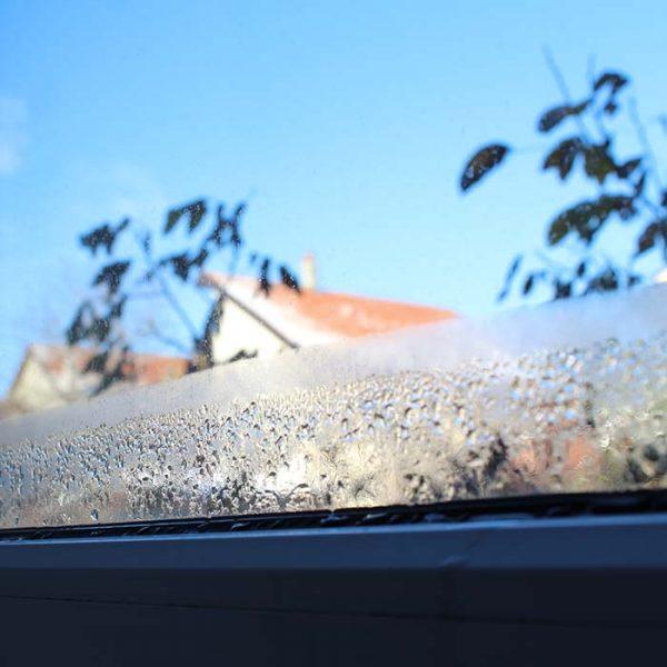 Dugg på innsiden av vinduet